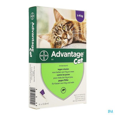 ADVANTAGE  80 KATTEN >4KG  4X0,8ML